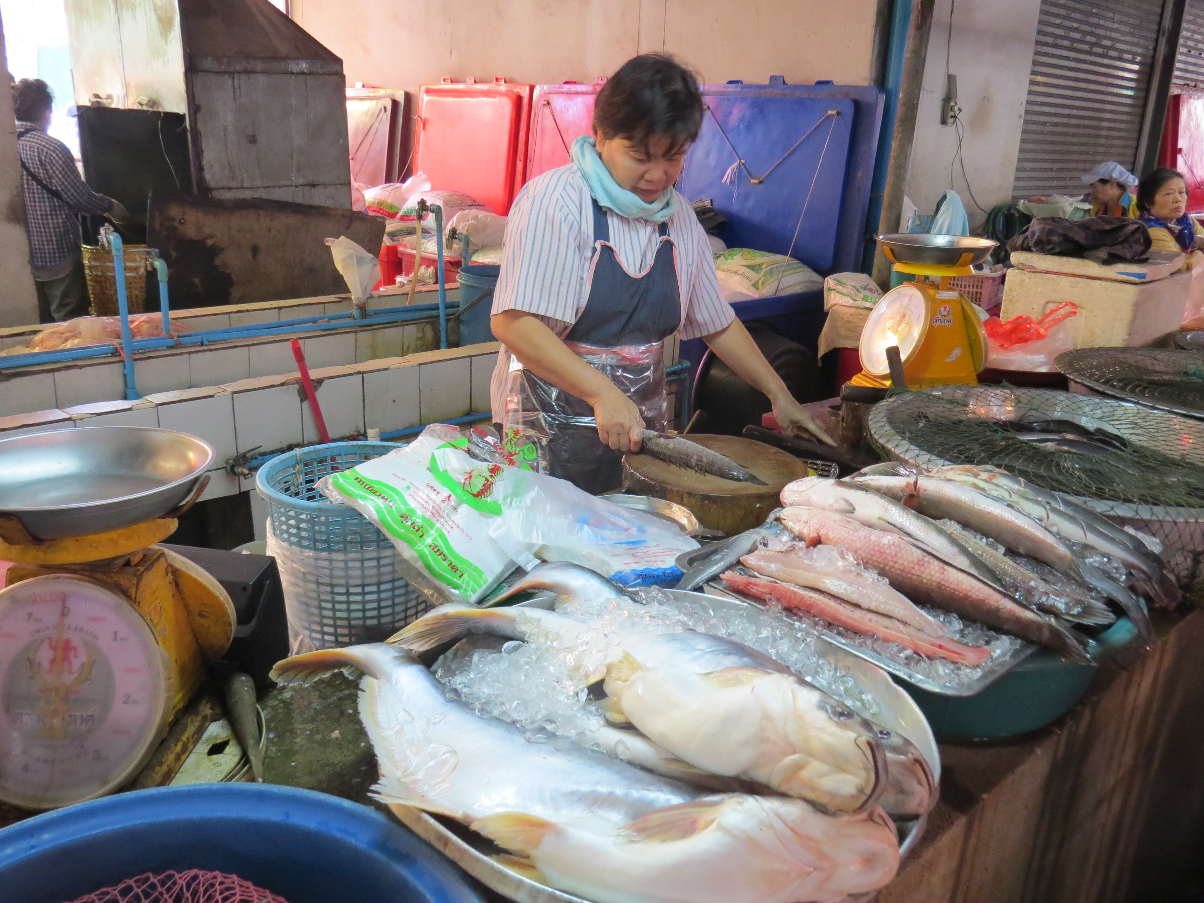 Targ rybny i owocow morza