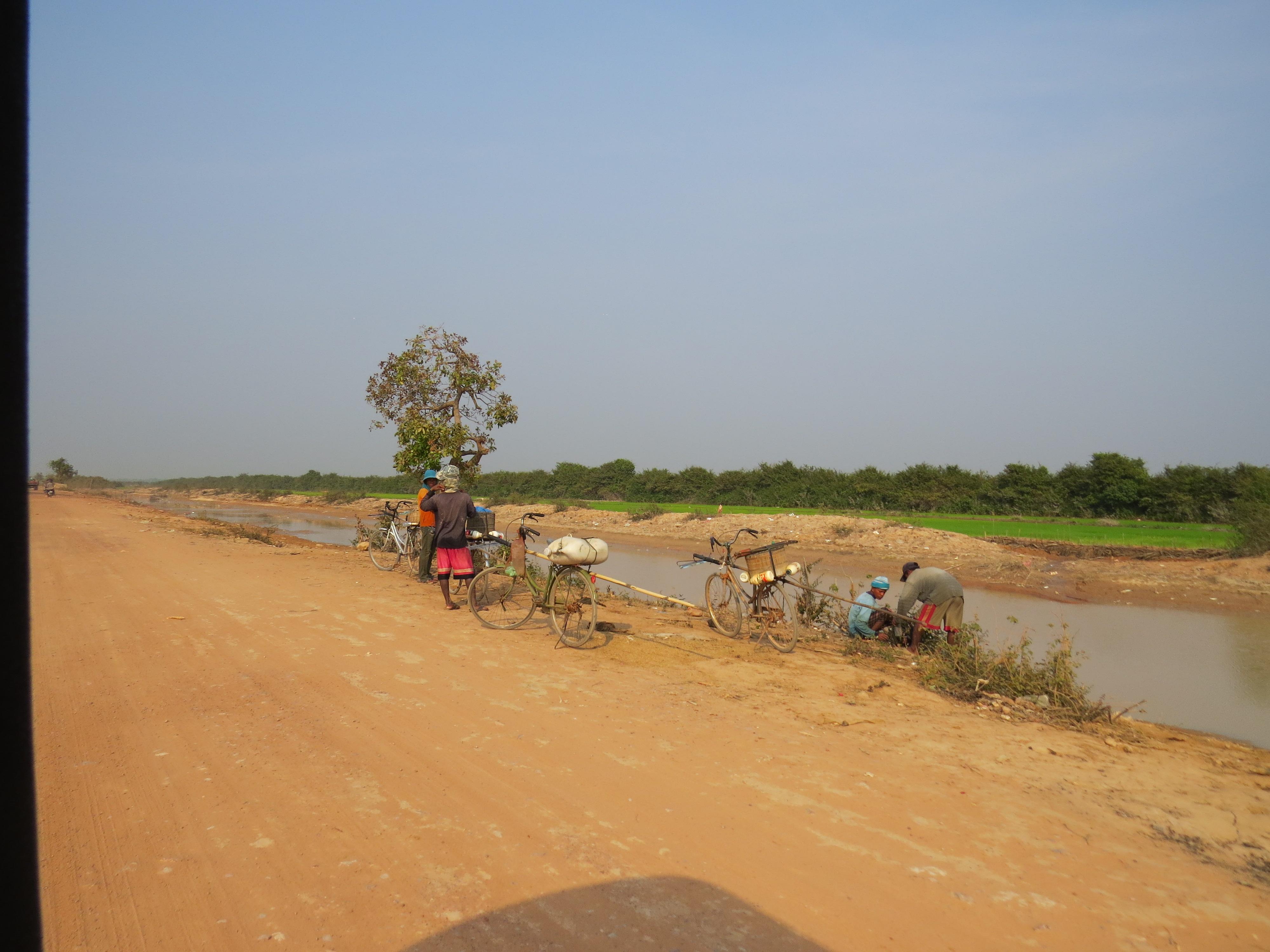 Suche drogi w Kambodży. W tle pola ryżowe.