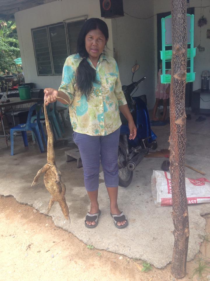 To chyba najdziwniejsza rzecz jaką jadłam w Tajlandii: monitore lizard. Nie do końca wiem jak smakowała, bo była tak ostra! ALe powiedziałabym, że trochę jak wołowina. Przygotowywała ją jedna z rodzin w naszej wsi. Plusy poznawania lokalnej społeczności ;) [foto Laura Mulvey]