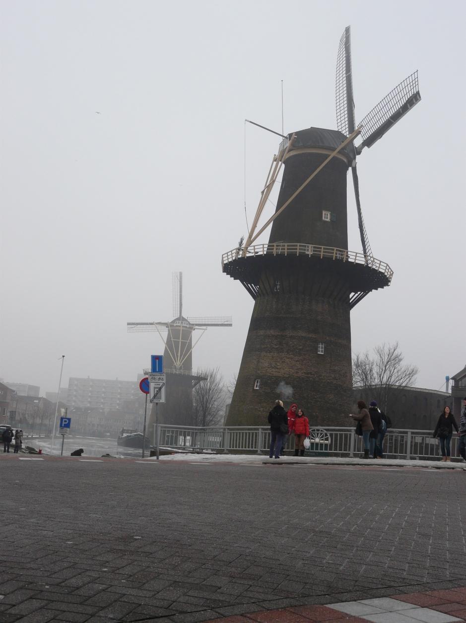 Czy tylko z wiatraków słynie Holandia?
